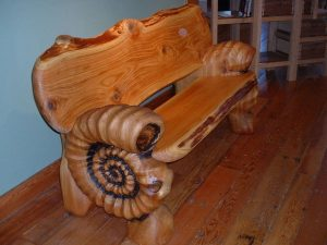 Ammonite Fossil Bench